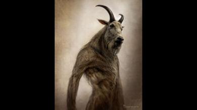 Arte conceptual de Las Crónicas de Narnia: Príncipe Caspian #5