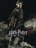 Cartel Harry Potter y el Cáliz de Fuego #1, edición francesa